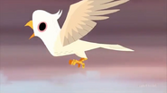 SJ Harpy Eagle
