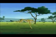 Cheetah (Wild Kratts)