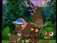 CTCD Elk