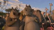 Madagascar2-disneyscreencaps.com-2436