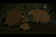North American Beaver (Wild Kratts)