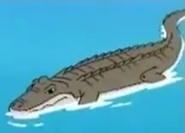 MSB Alligator