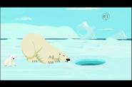 Polar Bear (Wild Kratts)