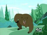 FHFIF Black Bear