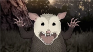 HBO Animals Opossum