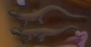 Fantasia 2000 Komodo Dragons