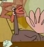 SitBC Turkey