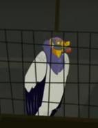 King Vulture (Wild Kratts)