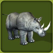 Black Rhinoceros (Blue Fang)