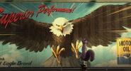 Bald-eagle-the-nut-job