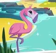 Greater-flamingo-animal-jam
