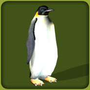 Emperor-penguin-zoo-tycoon