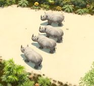 TheJungleBunch Rhinos