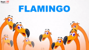 MagicBox Flamingo