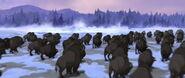 Plains-bison-spirit