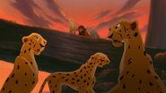 Cheetah-the-lion-king-2