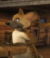 Spotted-hyena-back-at-the-barnyard