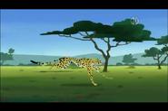 Cheetah-wild-kratts