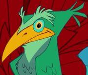 TLK Bird 1