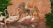 Greater-flamingo-life-of-pi