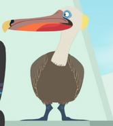 Brown-pelican-wild-kratts