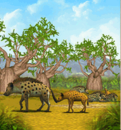 Spotted-hyena-zoo-tycoon