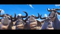JBTM Wildebeests