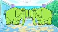 TTG! Elephants