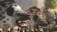JungleBunch Hyenas