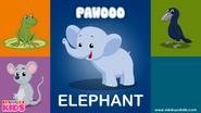 Ebubuzz Kids Elephant