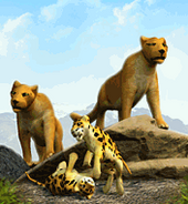 Cougar-zoo-tycoon
