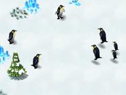 Emperor-penguin-wonder-zoo