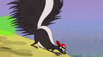 Skunk km