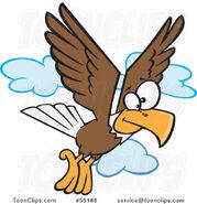 Bald-eagle5