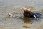 La Plata Dolphin rescued3