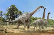 Brachiosaurus heard