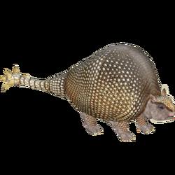 Doedicurus (Lgcfm & Ulquiorra) M