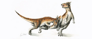 Two subadult Pachycephalosaurus headbutting