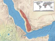 Chamaeleo calyptratus distribution