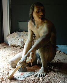 800px-Homo antecessor male