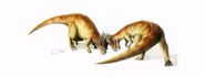 Pachycephalosaurus headbutting each other