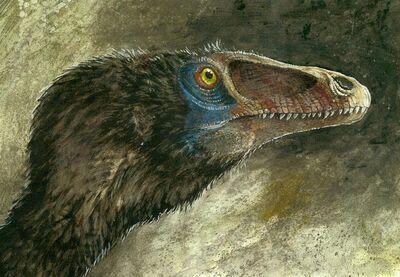 Deinonychus antirrhopus by patriatyrannus