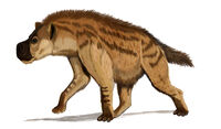 Restoration Dinocrocuta gigantea