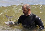 La Plata Dolphin rescued6