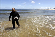 La Plata Dolphin rescued5