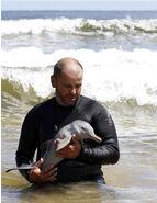 La Plata Dolphin rescued2