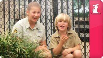 Bindi & Robert Irwin feature huge salt-water crocodile - Growing Up Wild