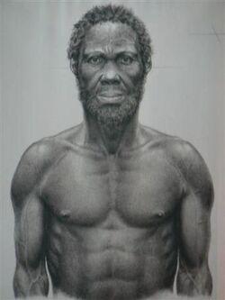 Homo Sapiens Idatlu