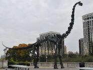 Brachiosaurus skeletion