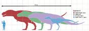 Tyrannosaurusscale